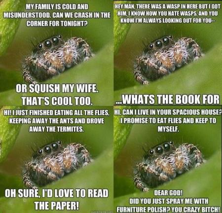 misunderstood.spiders