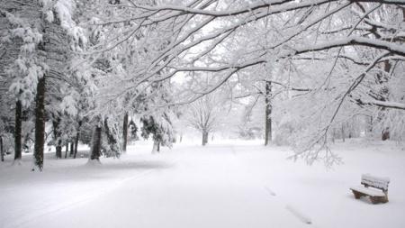 Coldest-Winters---Generic-jpg