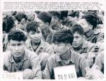 pleiku_1966__operation_paul_revere_viet_cong_prisoners__vietnam_war_upi_wire_photo