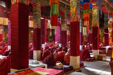 Monks praying at Darjay Gompa temple in western Sichuan